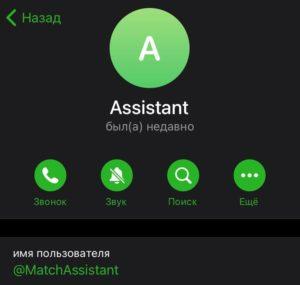 match assistant администратор